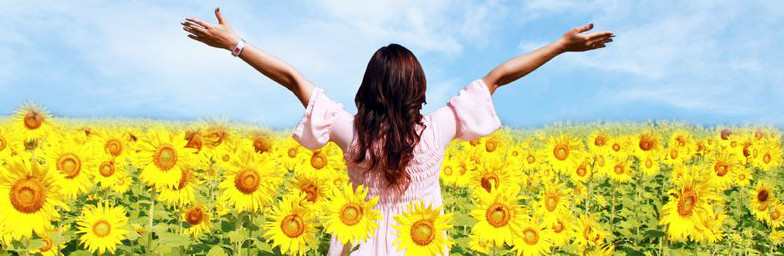 Lady in field of sunflowers with arms raised